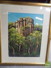Sale 8518 - Lot 2059 - Sergio Sill - Kakadu 54.5 x 74.5cm (frame size 87.5 x 105cm)