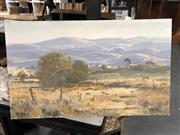 Sale 8789 - Lot 2158 - Doug Sealy Grazing Sheep oil, 30.5x51cm, signed lower left
