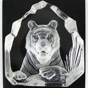 Sale 8387 - Lot 81 - Mats Jonasson Maleras Wildlife Tiger Clear