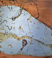 Sale 8996A - Lot 5005 - John Olsen (1928 - ) - Salt Pan After the Rain 112 x 102.5 cm