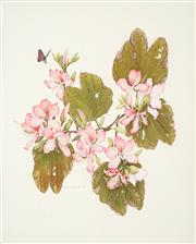 Sale 8491 - Lot 2020 - Peter Longhurst (1922 - ) - Orchids and Butterflies, 1974 44 x 36cm