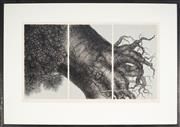 Sale 9055A - Lot 5074 - Hanna Kay (1947 - ) - Untitled - Tree 38 x 69 cm (frame: 66 x 93 x 3 cm)