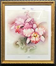 Sale 8941 - Lot 2077 - Singed Orchids, Watercolour, 37.5x35.5cm