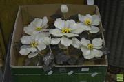 Sale 8347 - Lot 1030 - Box of Faux Flowers