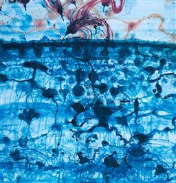 Sale 9112A - Lot 5046 - John Olsen (1928 - ) - Sunbird & Lily Pond, 1997 64 x 61.5 cm (frame: 95 x 86 x 3 cm)