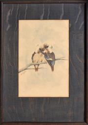 Sale 8408 - Lot 581 - Alice Cayley (active 1900s) - Two Kookaburras 21 x 13.5cm