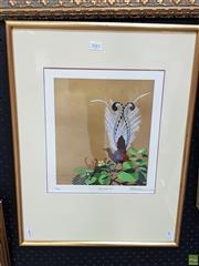 Sale 8587 - Lot 2081 - Blake Twigden - Lyrebird, screenprint, 27.5 x 24cm (frame: 58.5 x 45.5cm), signed lower right