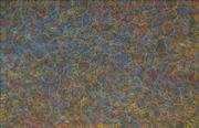 Sale 8657E - Lot 5046 - Gracie Morton Pwerle (c1956 - ) - Bush Plum 129 x 201cm (stretched and ready to hang)