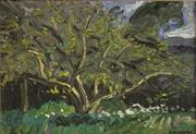 Sale 8342A - Lot 37 - Rick Amor (b.1948) - Pear Tree Baxter, 1984 24 x 34 cm