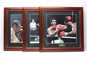 Sale 8733 - Lot 29 - Three good colour photographs of Ali in action, neatly framed.