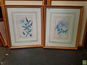 Sale 8627 - Lot 2010 - Pair of Botanical Decorative Prints, 54 x 45cm (frame size)