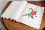 Sale 9071H - Lot 51 - Folio of Redoutes Roses