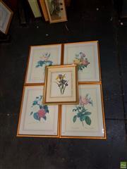 Sale 8627 - Lot 2025 - Set of (5) Botanical Decorative Prints, 53.5 x 42.5cm (4); 36.5 x 45cm (frame size)