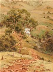 Sale 8633A - Lot 5063 - Christine de Stoop (1948 - ) - Rolling Hills 39.5 x 29.5cm