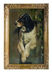 Sale 8586A - Lot 55 - European School - Portrait of a Spaniel 30 x 20 cm