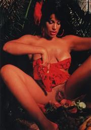 Sale 8822A - Lot 5028 - Ecstasy Magazine - Vanessa Del Rios Cold Plate, 1992 26 x 19cm
