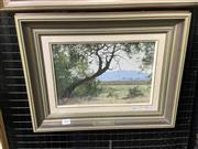 Sale 9091 - Lot 2019 - John Downton, The Bent Tree, Rosemount Estate, 1992, oil on canvas board, frame: 35 x 45 cm, signed lower right -