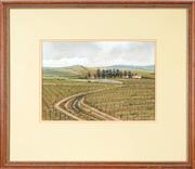 Sale 8762 - Lot 2046 - W. Ron Campbell - Vinyards 22.5 x 32.5cm