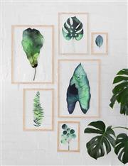 Sale 8891 - Lot 2078 - Charlie Green (Set of 6) Botanic Series
