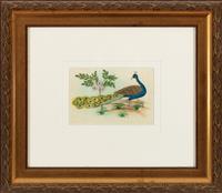 Sale 8934H - Lot 20 - Indian School, Artist Unknown, Peacock in the Garden, work on silk, 9cm x 13.5cm