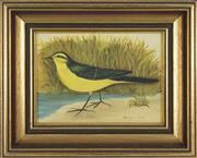 Sale 8716 - Lot 2082 - Frances Jones (1923 - 1999) - Yellow Wagtail 14.5 x 19.5cm