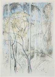 Sale 8537 - Lot 2004 - Jamie Boyd (1948 - ) - Australian Bush Scene 70 x 49cm