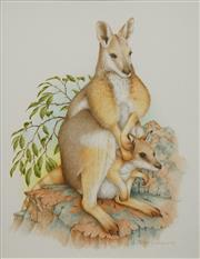 Sale 8699 - Lot 2014 - Peter Longhurst (1922 - ) - Rock Wallaby and Joey (illustrated in Bush Strokes, plate 14) 40 x 35cm