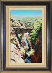 Sale 8953 - Lot 2008 - Scott McDougall (1953 - ) - Tolmer Falls, N.T. 41.5 x 24.5 cm (frame: 58 x 41 x 6 cm)
