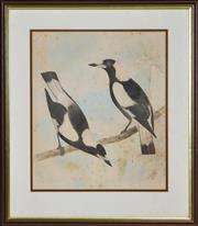 Sale 8358 - Lot 594 - Neville William Cayley (1886 - 1950) - Magpies 41.5 x 34cm