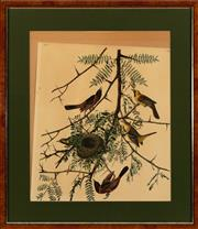 Sale 8934H - Lot 42 - A framed coloured bookplate of a bird, frame size 66cm x 57cm