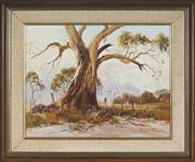 Sale 9091 - Lot 2030A - Robyn Collier (1949 - ) Old Warrior, Megalong Valley oil on canvas board, frame: 50 x 60cm, signed -