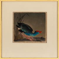 Sale 8934H - Lot 29 - Ethlene Palmer, bald coot, linocut, edition 9/30 dated 1936 frame size 37cm x 37cm