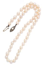 Sale 9066 - Lot 375 - AN AKOYA PEARL NECKLACE; 6.2 - 6.5mm round cultured pearls of cream colour with good lustre on a silver clasp, length 43cm, needs re...