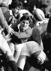 Sale 8754A - Lot 15 - Australia vs British Lions Test Match, Sydney Football Stadium, 1 July1989 - 25 x 20cm