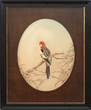 Sale 8795A - Lot 99 - Neville Henry Pennington Cayley (1853 - 1903) - Eastern Rosella, 1900 54 x 42.5cm
