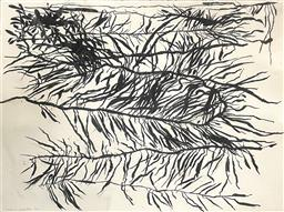 Sale 9101 - Lot 2012 - Chris Gentle Roots (Study) charcoal on paper 72 x 84cm (mounted, unframed) signed -