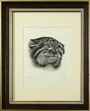 Sale 8690A - Lot 5015 - John Searl - Cashmere-Pallas Cat 29.5 x 24cm