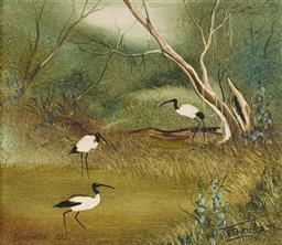 Sale 9125A - Lot 5095 - Robert Taylor (1924 - 2010) - Backwater Ibis, Murray River, 1979 15.5 x 18 cm (frame: 28 x 31 x 3 cm)