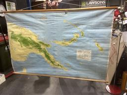 Sale 9101 - Lot 2084 - 2 Large Hanging School Room Maps: The World 1895 & Papua New Guinea 1977