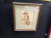 Sale 8695 - Lot 2015 - J Flower - Kookaburra, 1891, watercolour, 20.5 x 17.5cm, signed lower right