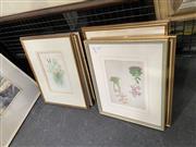 Sale 9041 - Lot 2024 - A good Group of (8) Antique Botanical Chromolithographs (framed/various sizes)