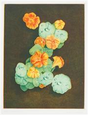 Sale 8492A - Lot 5089 - Peter Hickey (1943 - ) - Nasturtiums, 1991 29.5 x 22cm
