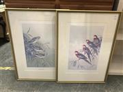 Sale 9072 - Lot 2051 - A set of 4 Neville Cayley limited edition prints, embossed, 71 x 52cm (frame) -
