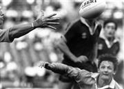 Sale 8754A - Lot 46 - Australia Rugby Union Team, Concord Oval, Sydney, NSW, 1988 - 18 x 25cm