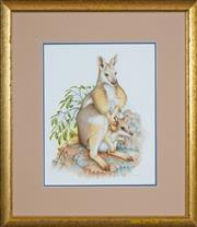 Sale 8443A - Lot 5100 - Peter Longhurst (1922 - ) - Rock Wallaby and Joey 40 x 35cm