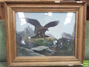 Sale 8429A - Lot 2065 - 19th / 20th Century School Eagle Striking Trapped Cat pastel, 42 x 56 cm