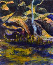 Sale 8349A - Lot 61 - Mitchell Kelly (1981 - ) - Wilpena Creek, 2006 122 x 102cm