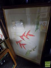 Sale 8461A - Lot 2058 - Artist Unknown (XX) Birds of Paradise and Shell Study, coloured pencil; signed