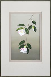 Sale 8286 - Lot 581 - Paul Osborne Jones (1921 - 1998) - Camellia Carillon 51 x 31.5cm