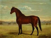 Sale 8519 - Lot 570 - Frederick Woodhouse, Senior (1820 - 1909) - Untitled (Horse), 1889 44 x 60cm